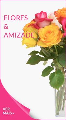 Flores para celebrar a amizade