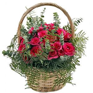 Cesto de Rosas Rosa Fuchsia