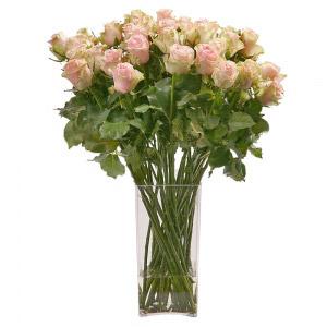 Jarra de Rosas Cor de Rosa e Verde