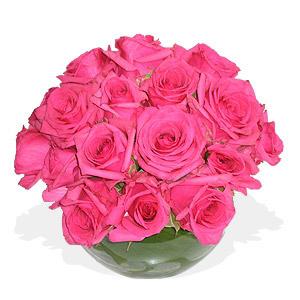 Jarra de Rosas Rosa Fuchsia Redonda
