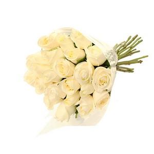 Molho de Rosas Brancas