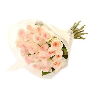 Molho de Rosas Cor de Rosa Claro
