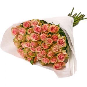Molho de Rosas Cor de Rosa e Verde
