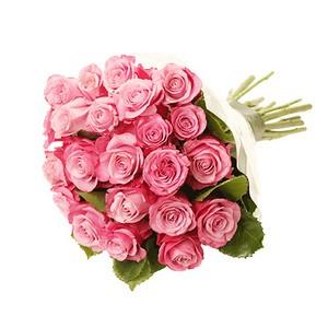 Molho de Rosas Cor de Rosa