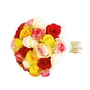 Molho de Rosas Multicolor
