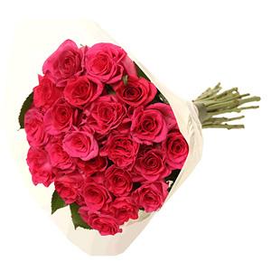 Molho de Rosas Rosa Fuchsia