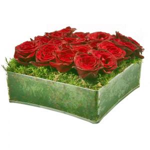 Quadrado de rosas